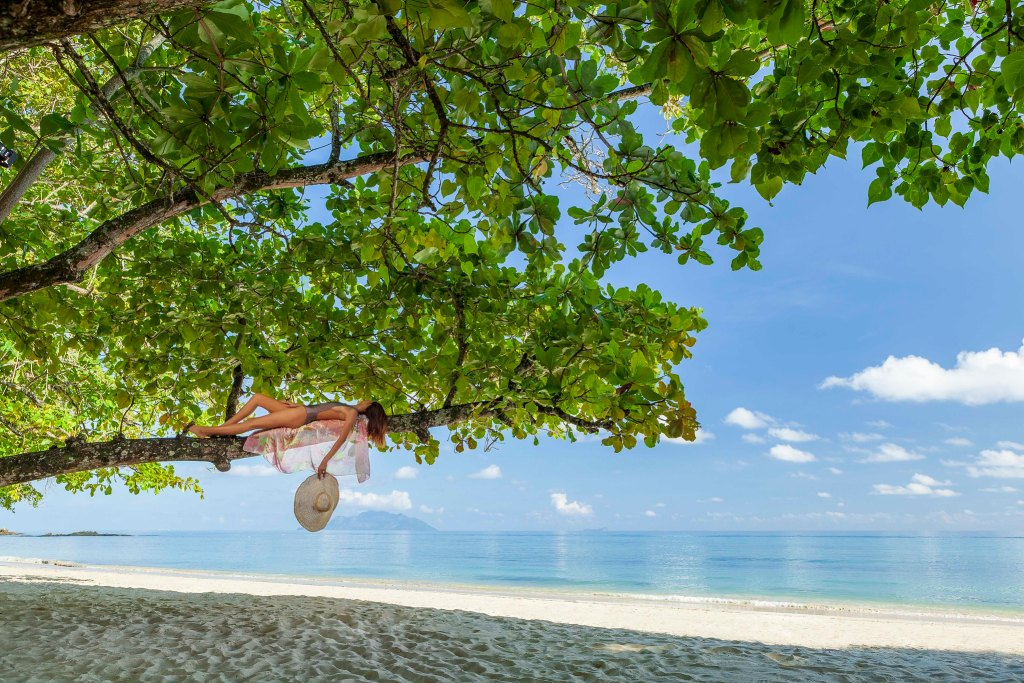 The Seychelles to reopen to the world - luxuriate life magazine