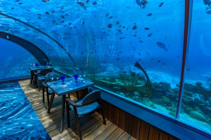 Hurawalhi Island luxury Maldives resort for adults Lunch at 5.8 Undersea Restaurant - Luxuriate Life Magazine